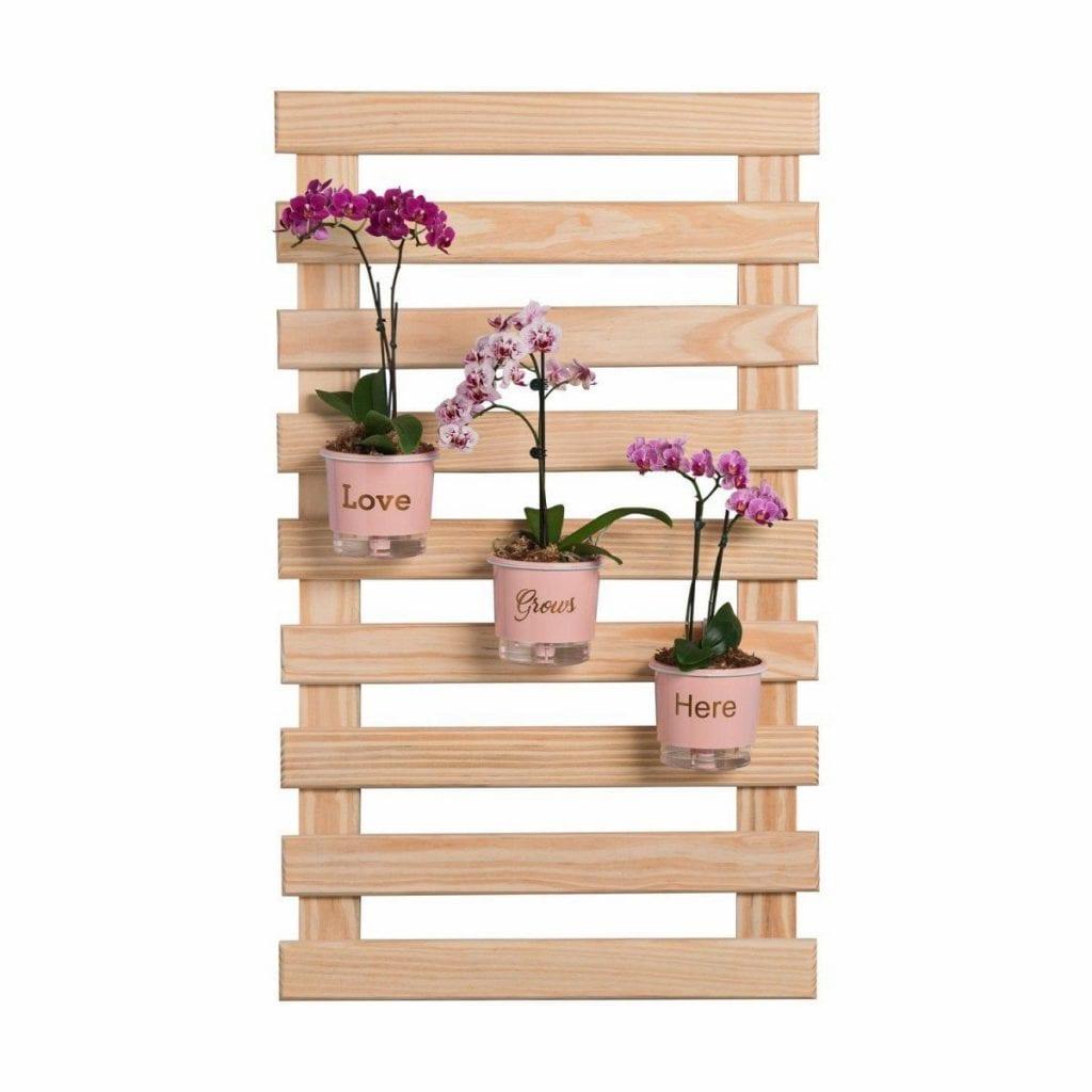 trelica_de_madeira_jardim-varanda