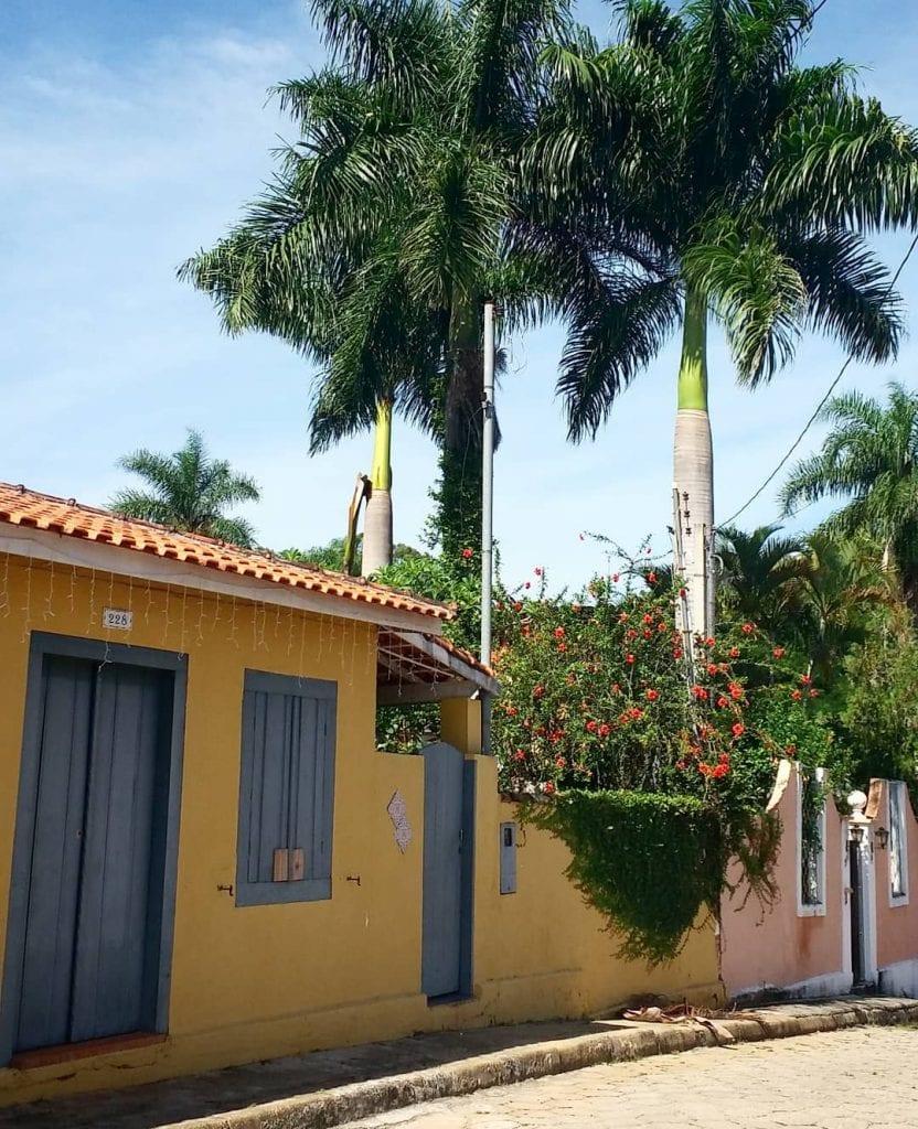 palmeira-imperial