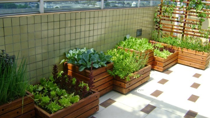 jardim simples com horta em caixotes