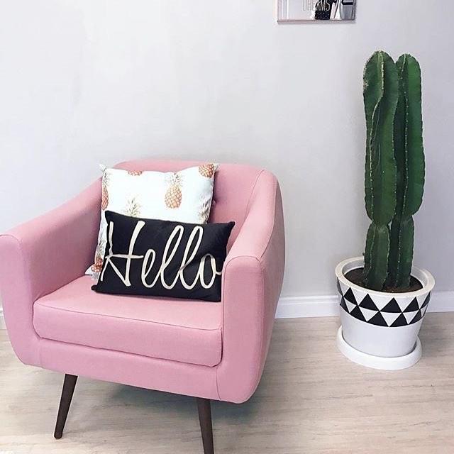 decoração moderna com poltrona rosa e cacto