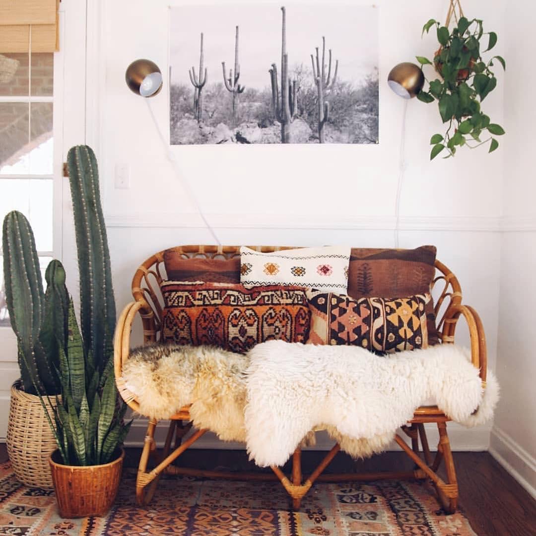 decoração rústica com cactos