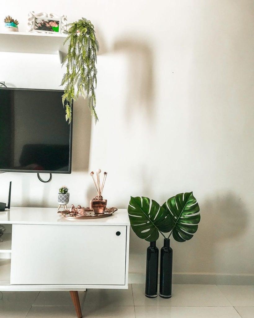 costela de adão em vaso como decoração da sala