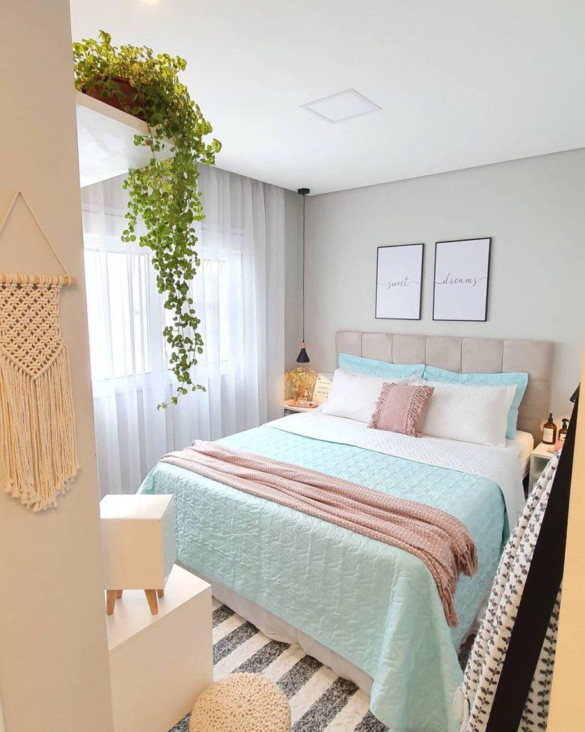 planta jiboia no quarto
